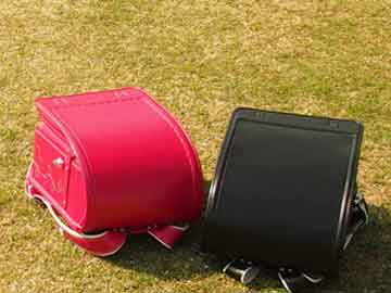 芝生に並べた赤と黒のランドセル